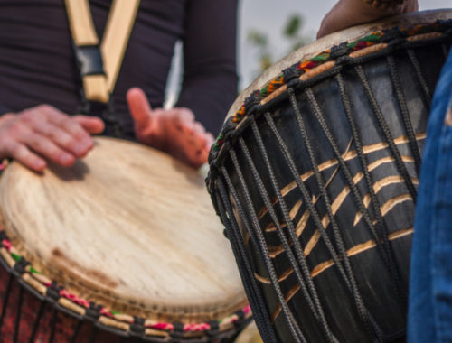 percussie instrumenten online bestellen