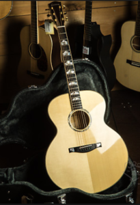 eastman gitaar