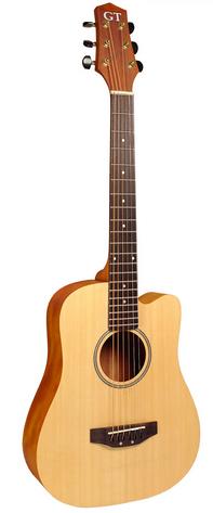 gold tone m-guitar