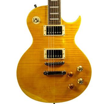 soorten elektrische gitaar single cut