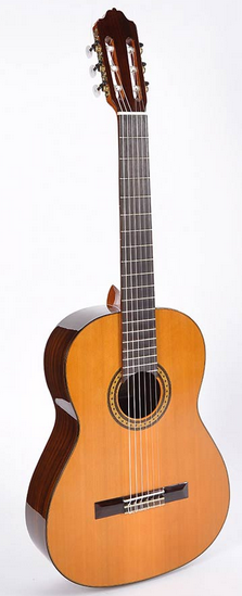 gitaar kopen voor muziekschool 1